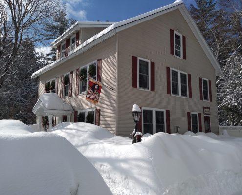 snow! winter 2019
